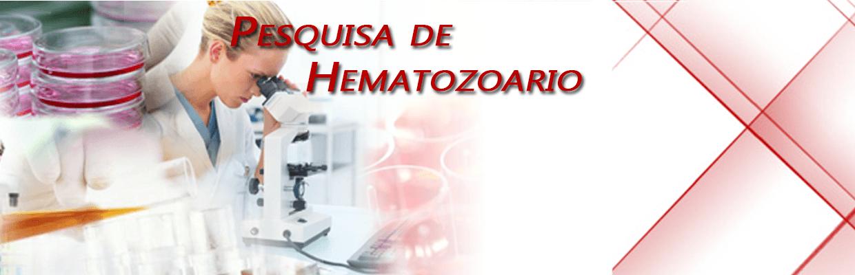 Pesquisa de Hematozoario e Inclusão Viral