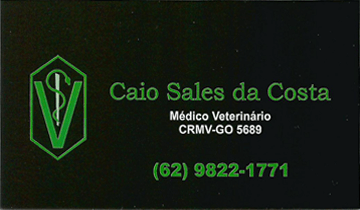 Caio Sales da Costa